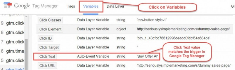 variables-google-tag-manager-preview